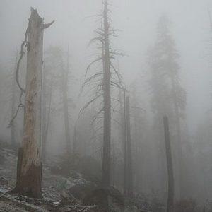 Mount Eerie- Mount Eerie Pt. 6 & 7