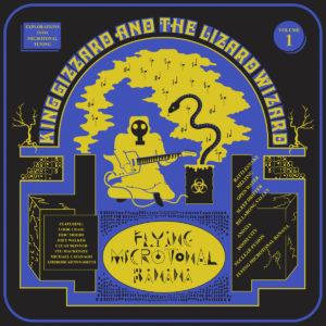 King Gizzard & the Lizard Wizard - Flying Microtonal Banana cover