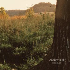 Andrew Bird - Noble Beast