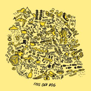 Mac DeMarco - This Old Dog cover