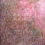 Blackbird Blackbird 'Summerheart LP'