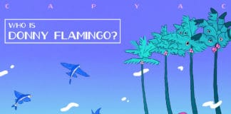 Capyac - Who Is Donny Flamingo? cover